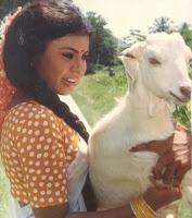Vichitra