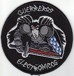 Grupo de Guerra Electrónica - Operadores de abordo ( Actual):