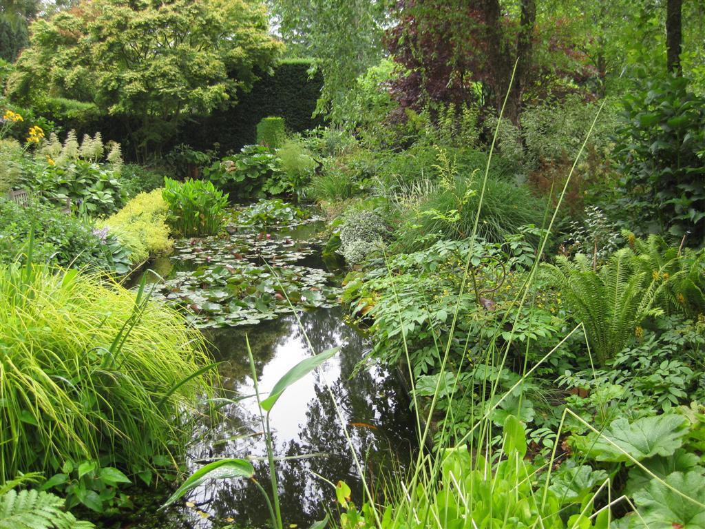The garden wanderer les jardins de castillon plantbessin for Les jardins