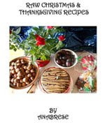 'Raw Christmas & Thanksgiving Recipes' ebook