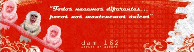 DAM162