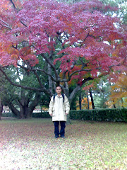 Kyoto, November 2007