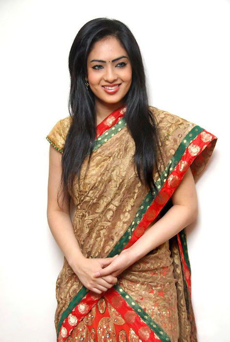 kp actre nikesha patel in traditional dress photo gallery