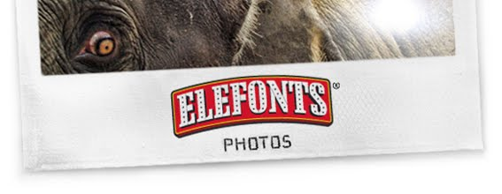Elefonts Photos