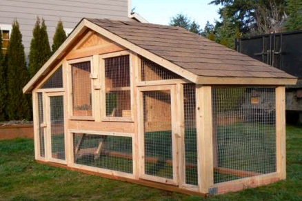 Chicken Coop Ideas Design chicken coop ideas small 10 how to build a small chicken coop chicken coop how to Homemade Nipple Waterer For Backyard Chickens Coop Chicken Coop Ideas Design