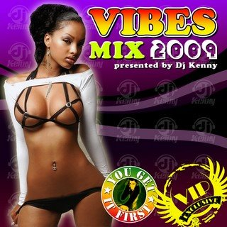 DJ Kenny Presents - Vibes Mix 2009