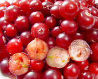 Canneberge-Cranberry