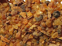Myrrhe-Commiphora molmol