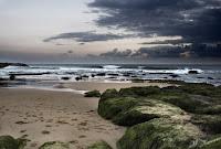 Imagen de una playa en un día nuboso