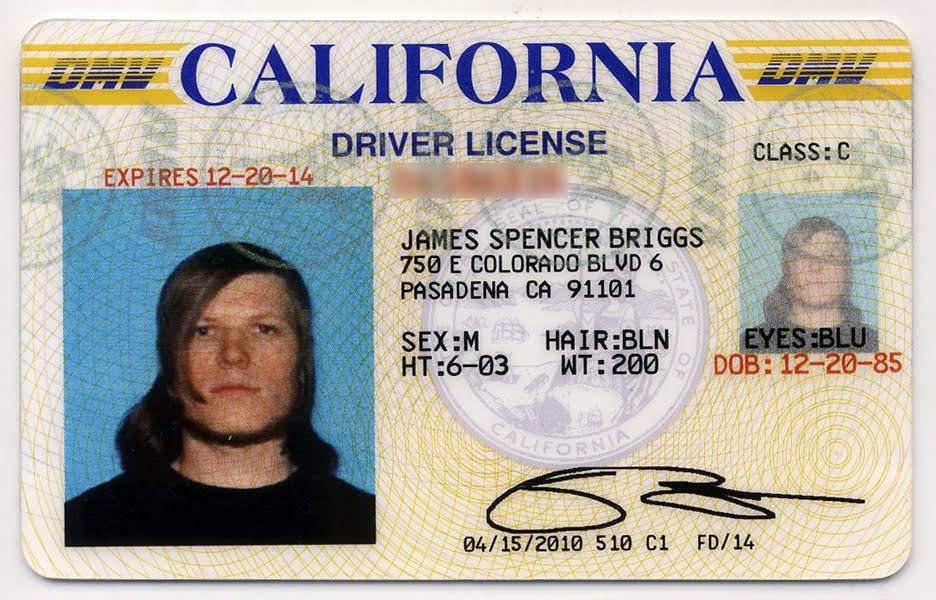 Can I Renew My Pa Drivers License At The Dmv