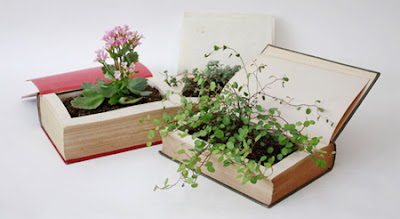 beautiful Book Plant Pot