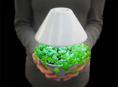 Creative Plants Light pot