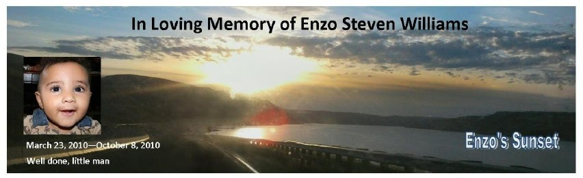 In Loving Memory of Enzo Steven Williams