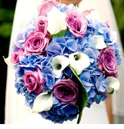 http://1.bp.blogspot.com/_L4IsFR3LmxQ/SxkWx0tGymI/AAAAAAAACmI/gQDp8p1vMuk/s320/blue+purple+white+bouquet.jpg