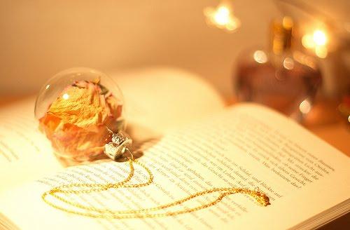 [pretty+book.jpg?1265367330]