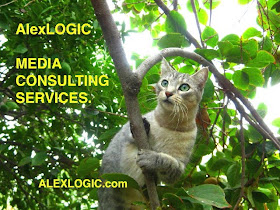 ALEX LOGIC MEDIA CONSULTING SERVICES TO THE RESCUE.