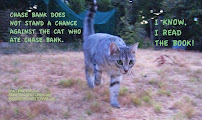 EVEN THIS CAT KNOWS TO HIDE FROM CHASE BANK.