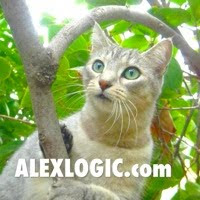 Check out Alex's Consulting Blog.