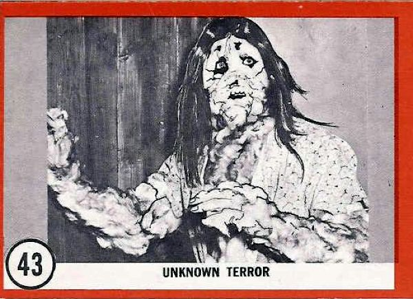 frankenstein and terror Terror of frankenstein, an irish/swedish coproduction, avoids the gimmickry and  anachronisms which have distinguished previous versions of.