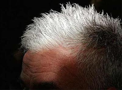 Eliminar canas del cabello