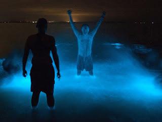 danau_biru_neon