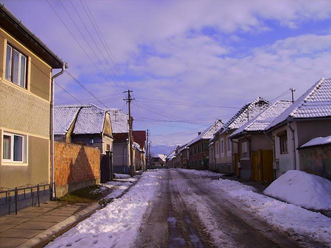 Stradă din oraşul Avrig Judeţul Sibiu