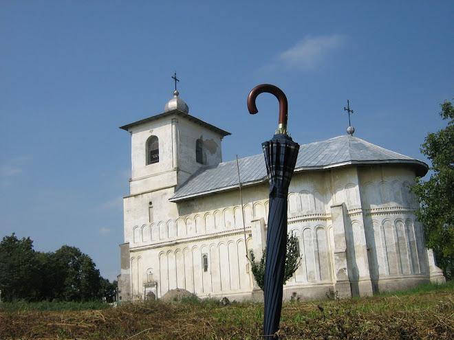 """Biserica Ortodoxa cu hramul """"Naşterea Maicii Domnului"""" din Ştefăneşti / BT"""