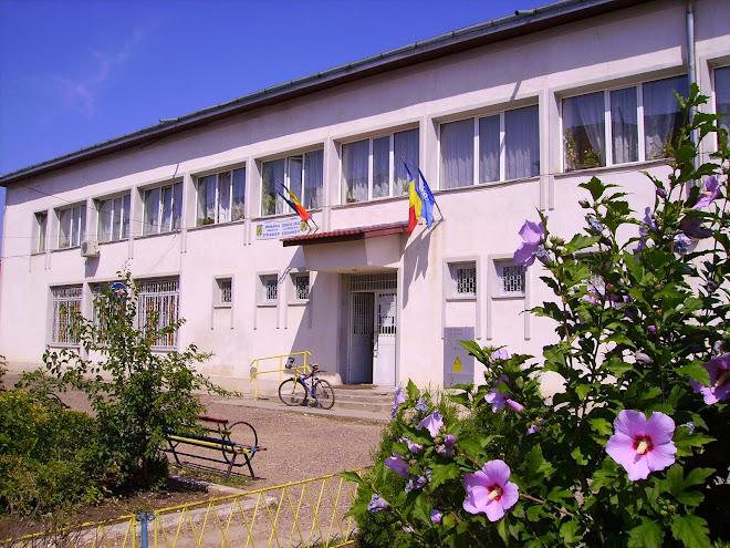 Primăria şi Biblioteca Orăşenească Ştefănesti
