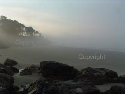misty morning landscape massachusetts new england coast