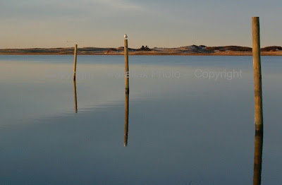 reflection posts water cape cod massachusetts beach