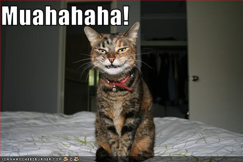 lol cat evil laugh