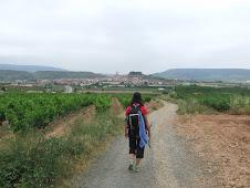 El Camino (link)