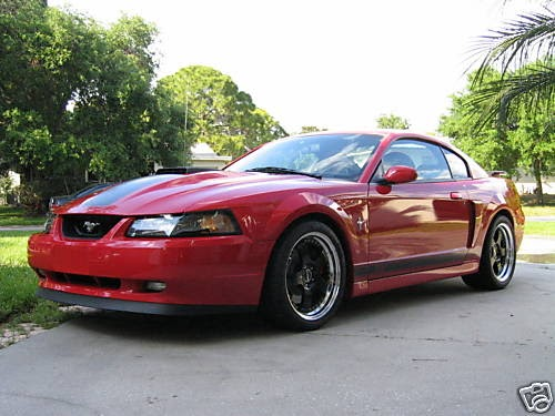 2003 ford mustang mach 1 whipple cobra ford mustang. Black Bedroom Furniture Sets. Home Design Ideas