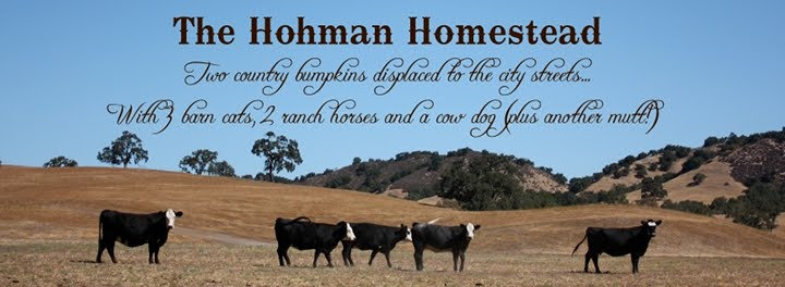 The Hohman Homestead