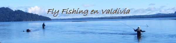 Fly Fishing en Valdivia