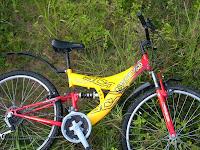 basikal kuning