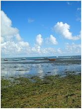 Presqu'île de Noirmoutier