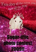 We entered the Sugarific Photo Contest