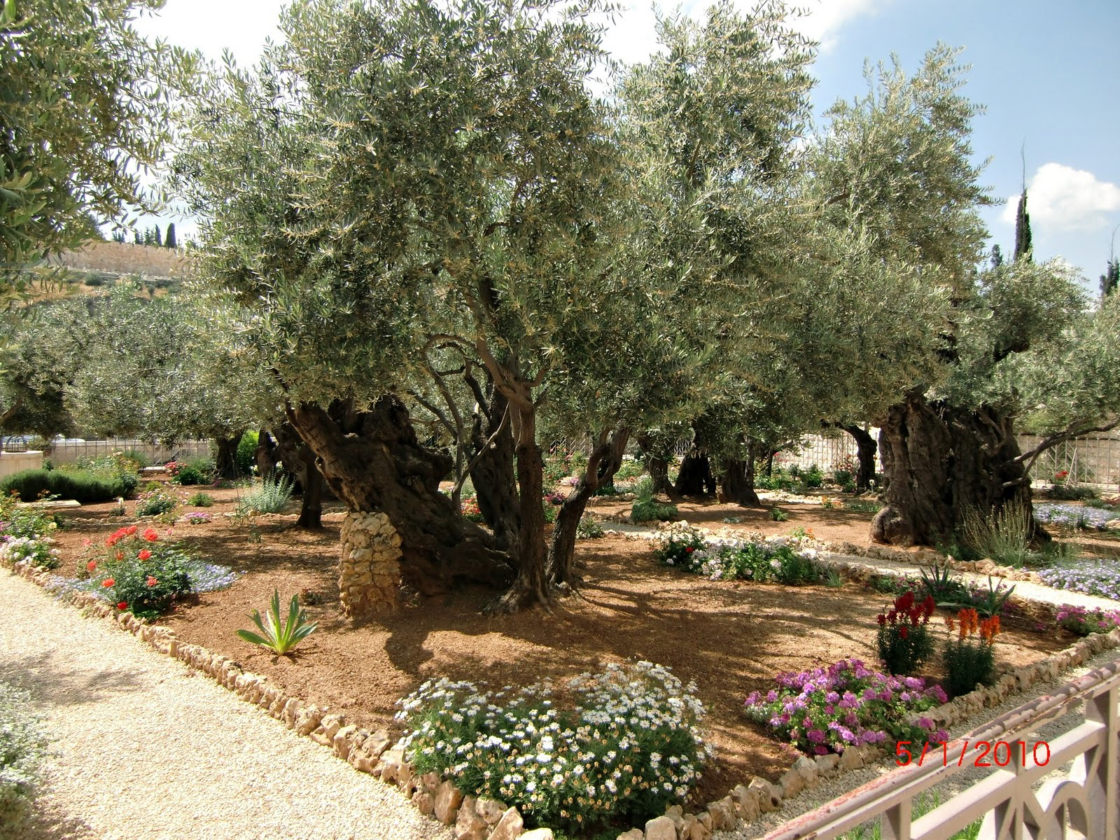 A Day In the Life of Us: The Garden of Gethsemane, Part 1