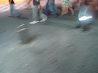 Esta fotografía la tomé en Benidorm en el 2006