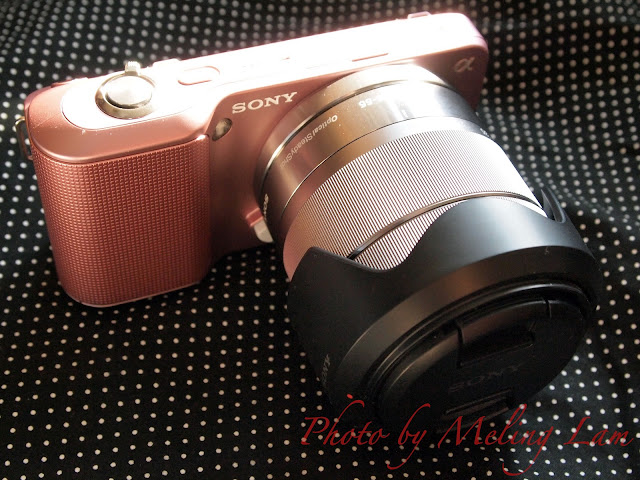 sony next-3 camera photo photography
