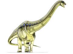 Aegyptossauro