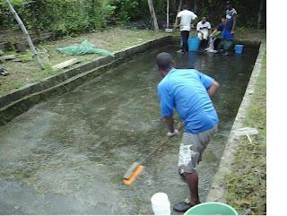 Acuiculturasenagaira proyecto tilapia roja for Como oxigenar el agua de un estanque para peces