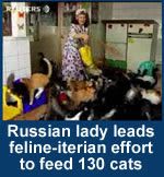 Russian lady leads feline-itarian effort for feed 130 cats