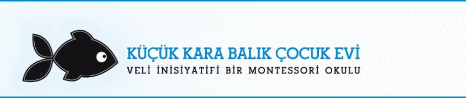 Montessori Okulu