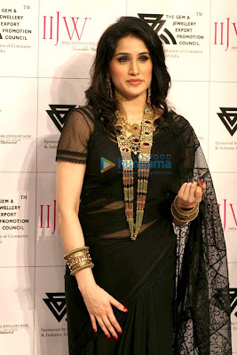 Sagarika Ghatge in black saree