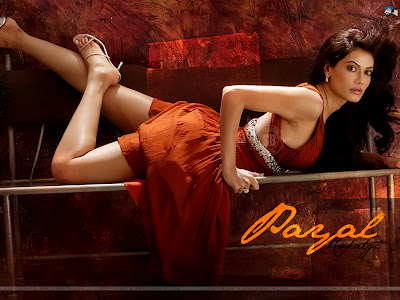 bollywood actress, payal , hot photo