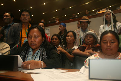 Indigenous Peoples Protest Climate Talks, Poznan