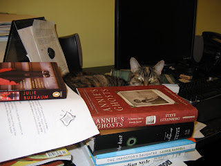 Cat peeking from behind book pile