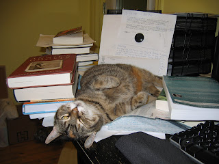 Upside down cat leaning against books
